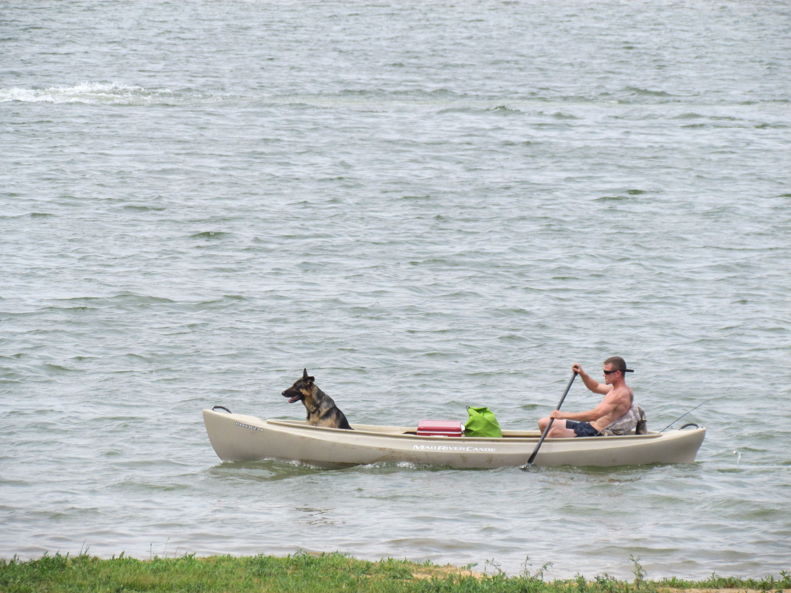 Canoeing with dog